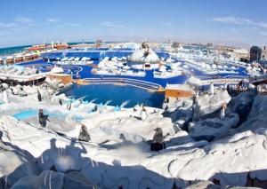 аквапарк Исландия